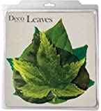 EuroQuest Imports Spring Deco Parchment Leaves, Package of 20