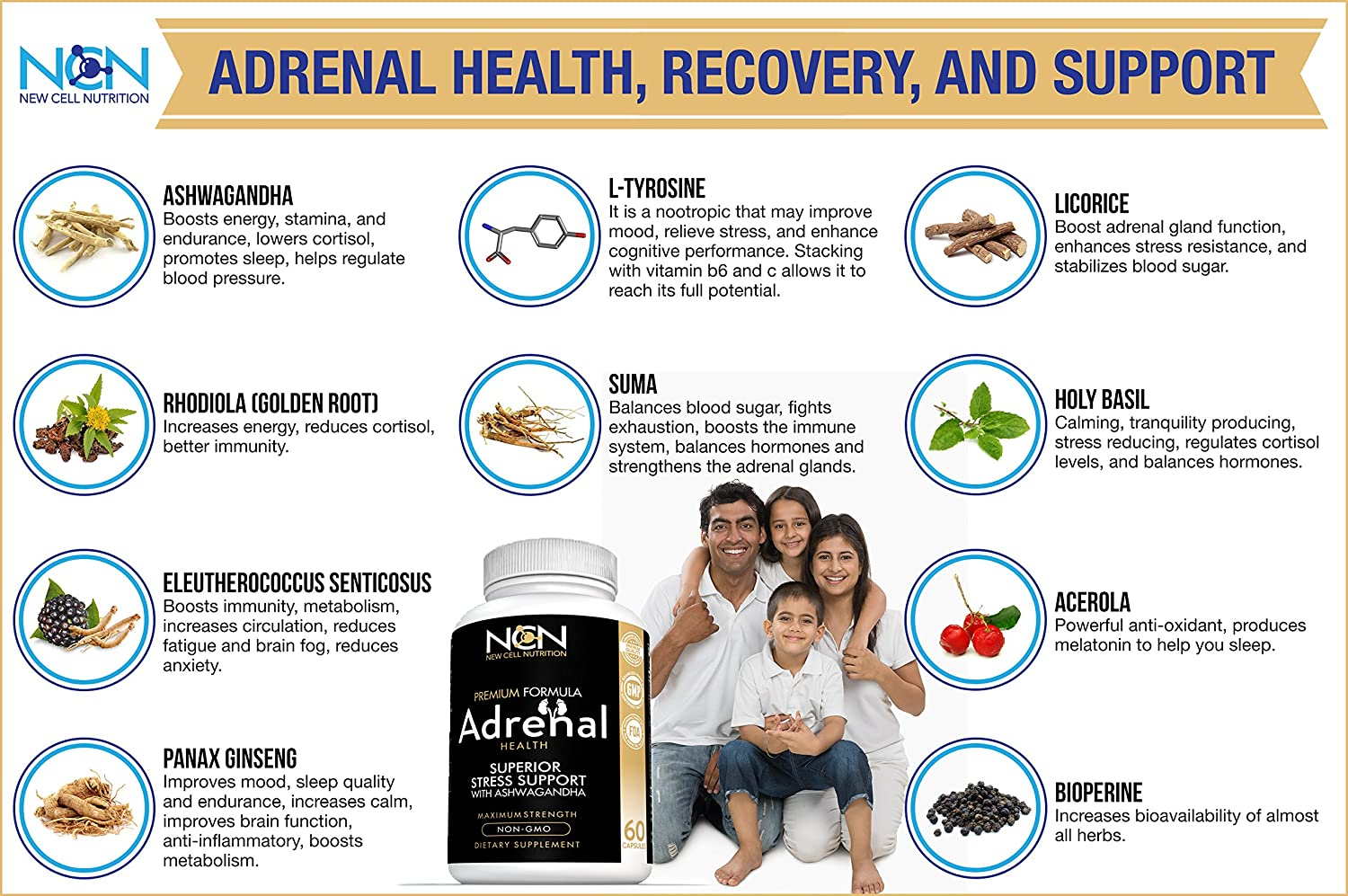 ... Basil for Adrenal Health - Premium Herbal Blend to Support Optimal Energy and Health - Supports Fatigue Management, Cortisol Regulation & Stress Relief, ...