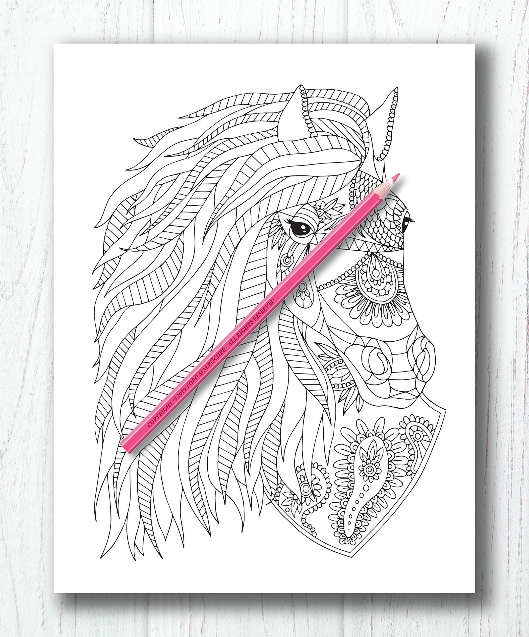 Amazon.fr - Pferde Malbuch: Malbuch für Erwachsene mit traumhaften
