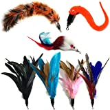 Pet Fit For Life Multi Piece Replacement Feathers Pack Plus Bonus Soft Furry Tail For Interactive Cat and Kitten Toy Wands