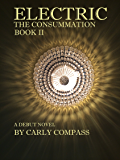 Electric, The Consummation, Book 2