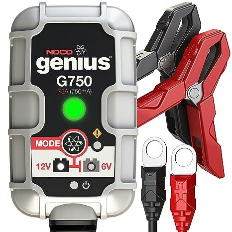 NOCO Cargador de Batería G750, 6 V/12 V, 0.75 A: Amazon.es ...