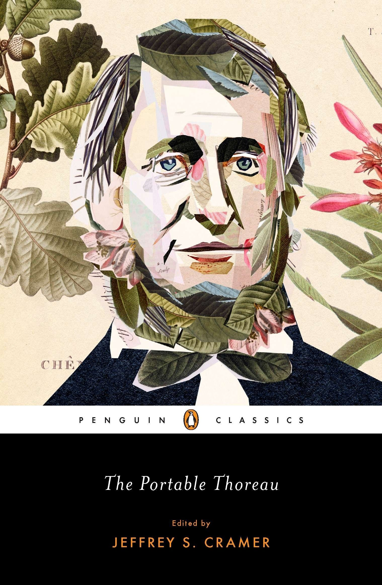 the portable thoreau penguin classics henry david thoreau the portable thoreau penguin classics henry david thoreau jeffrey s cramer 9780143106500 com books
