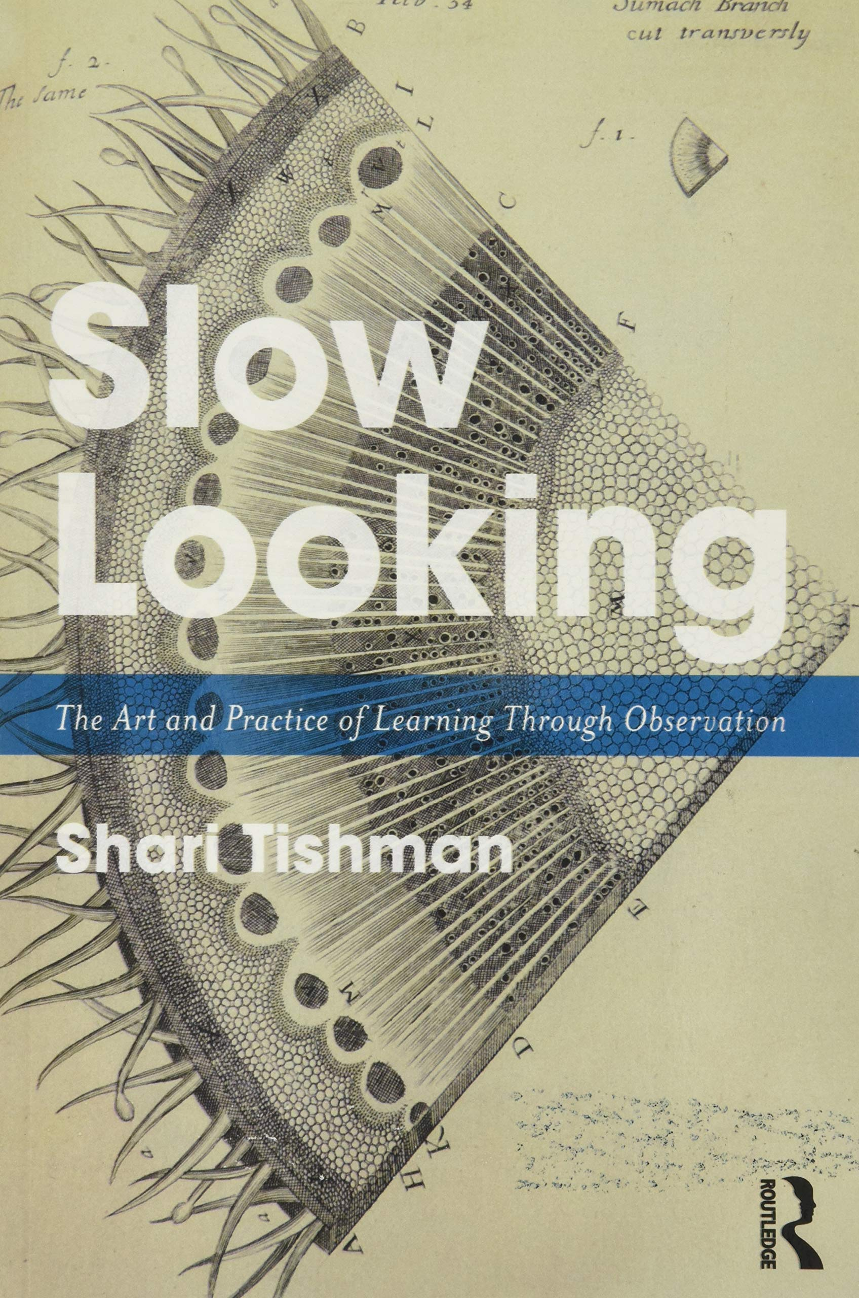 Slow Looking: The Art and Practice of Learning Through ...