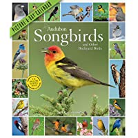 Image for Audubon Songbirds and Other Backyard Birds Picture-A-Day Wall Calendar 2021