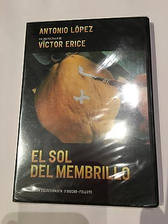 El sol del membrillo (DVD) exclusiva fnac: Amazon.es: Antonio López Documentary, Víctor Erice: Cine y Series TV