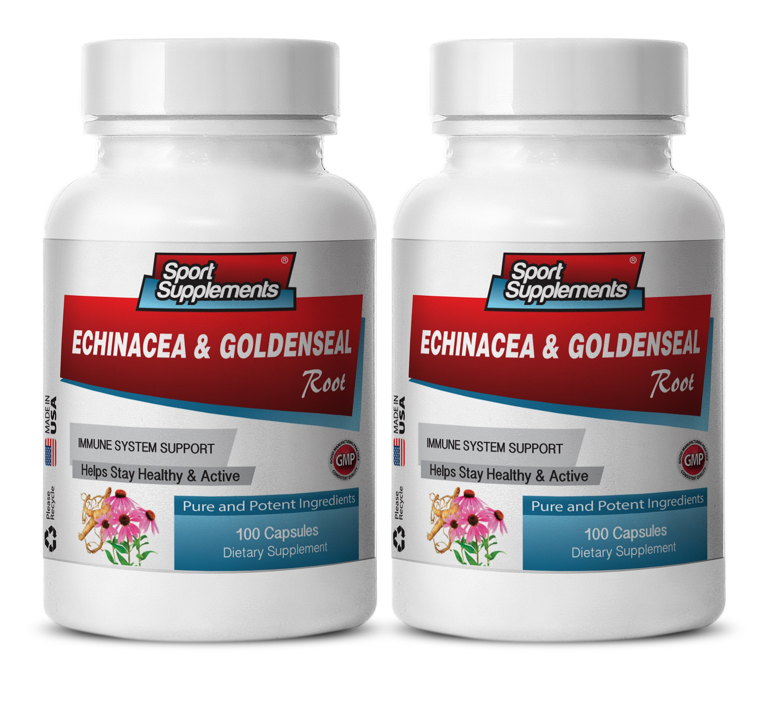 metabolism and energy - Echinacea & Goldenseal Root 300MG - goldenseal pills - 2 Bottles (200 Capsules)
