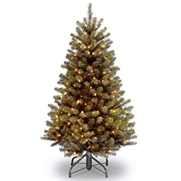 Amazon.com: National Tree 4.5 Foot North Valley Spruce Tree with ...