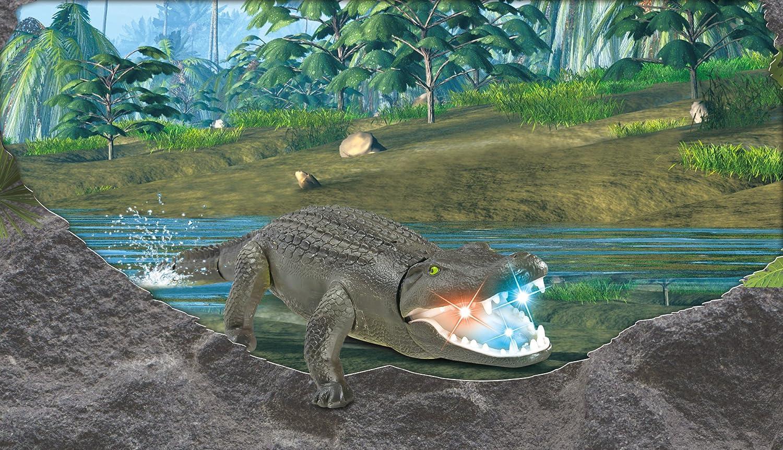 Jouet Animalier en Crocodile Prank Top Race Crocodile t/él/écommand/é on dirait quil Se Sent Vraiment rugir et Se d/éplacer comme Un Vrai Crocodile TR-Croc