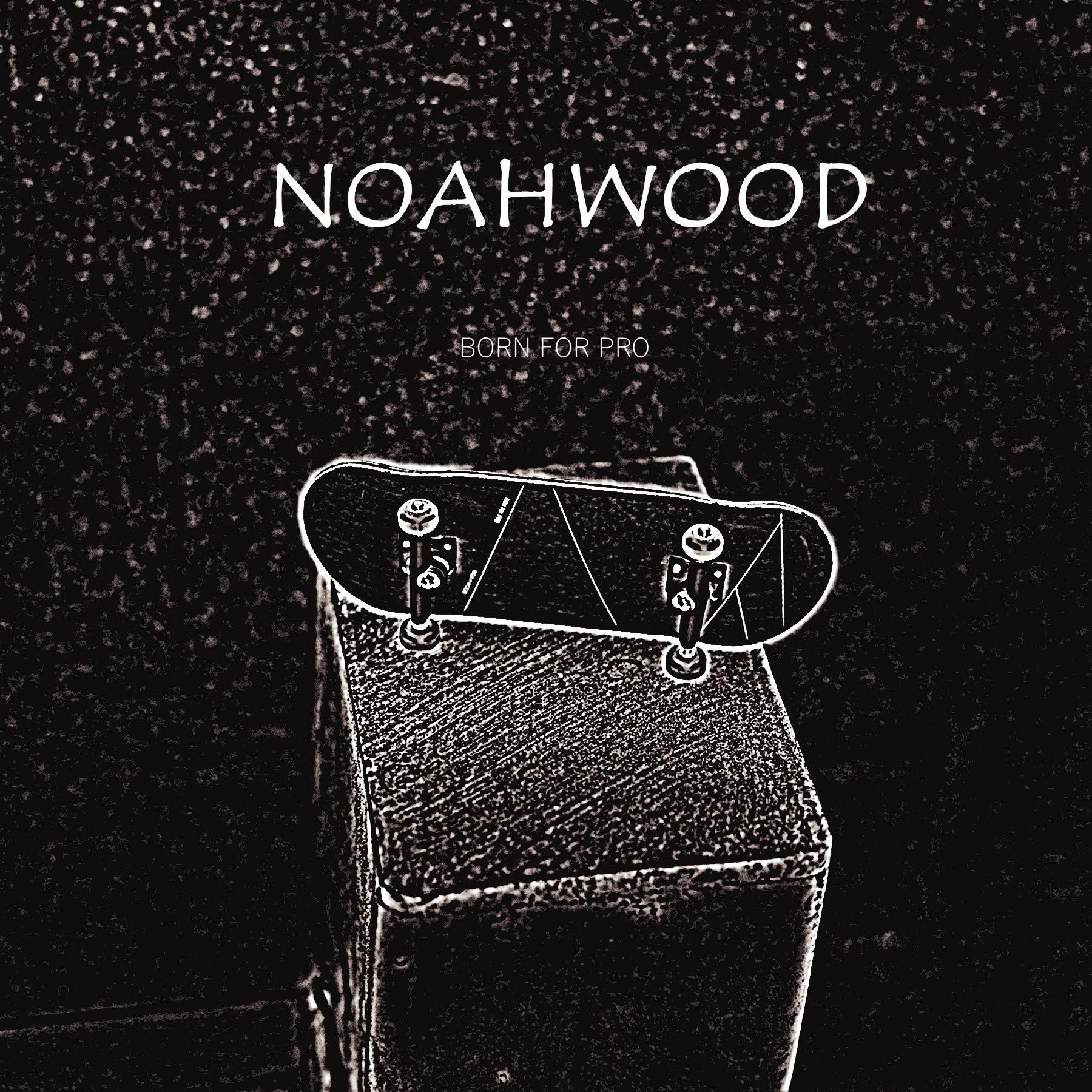 NOAHWOOD Wooden PRO Fingerboards (Deck,Truck,Wheel / a Set) (Born for PRO) by NOAHWOOD (Image #9)