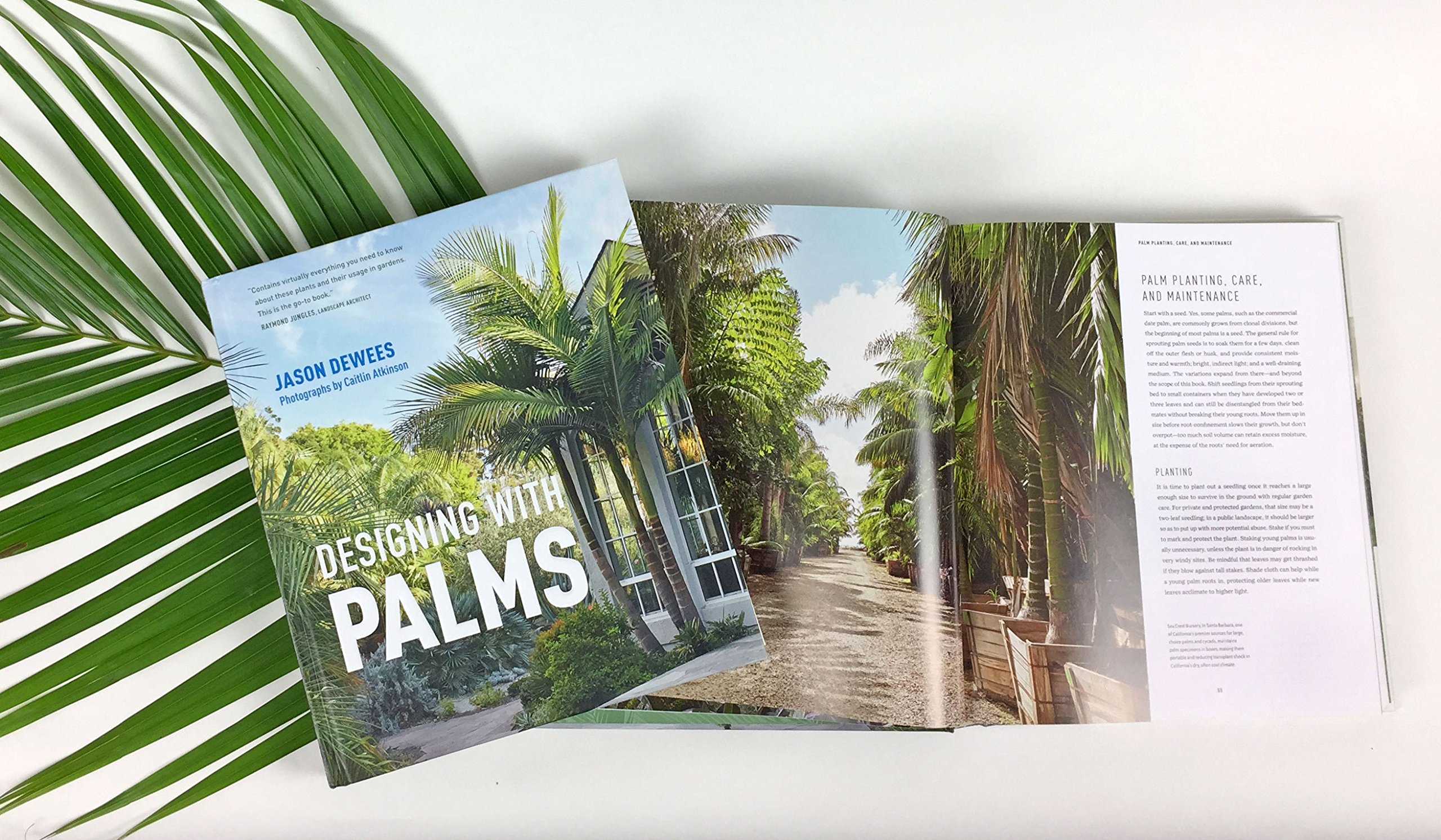 Designing with Palms by Timber Press