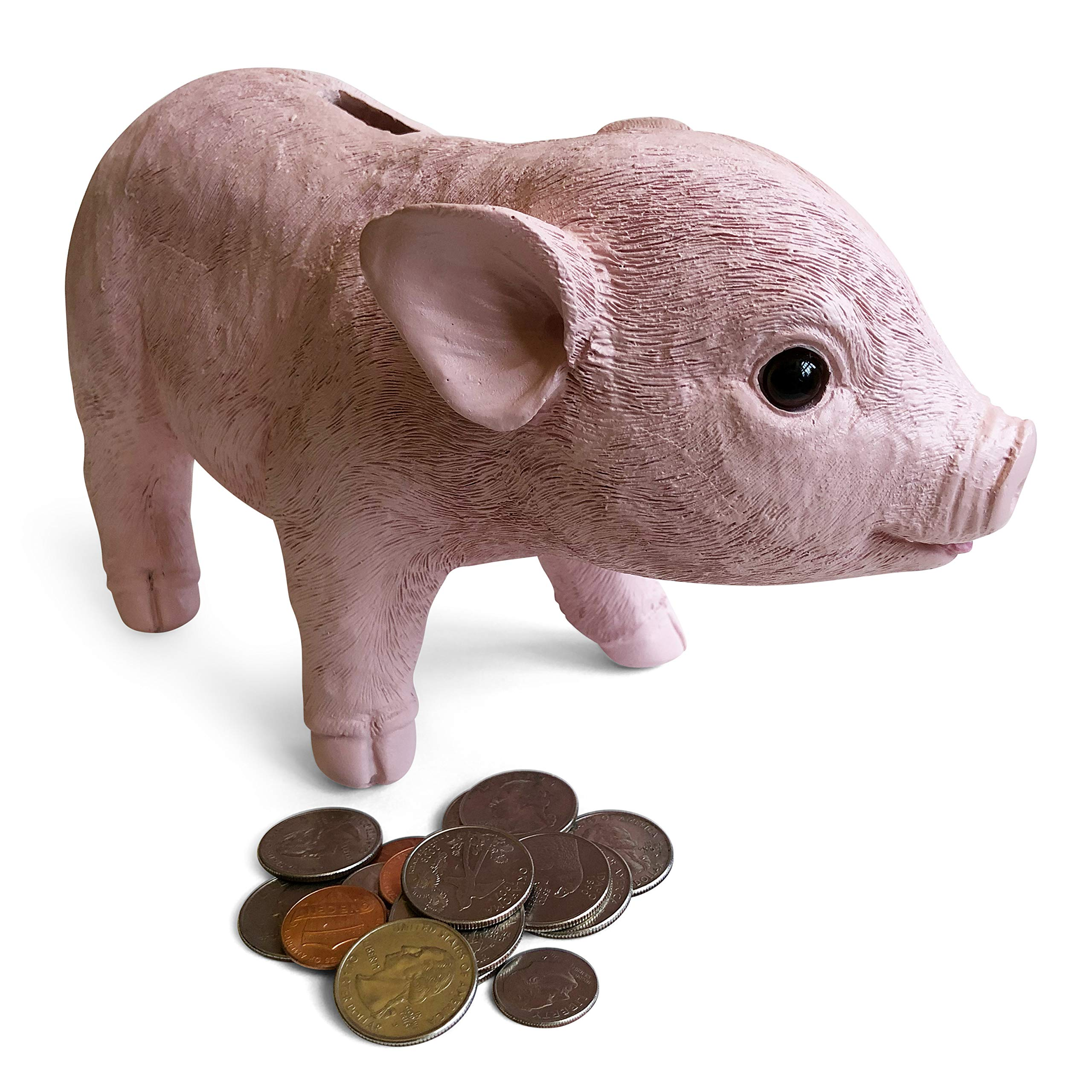 Kids Piggy Bank for Girls & Boys of all Ages - Lifelike Teacup Piglet Coin Bank is a fun and cute piggy bank for Adults too - Features gift ready packaging and wide slot for both coin and bills by Spark Toys & Games