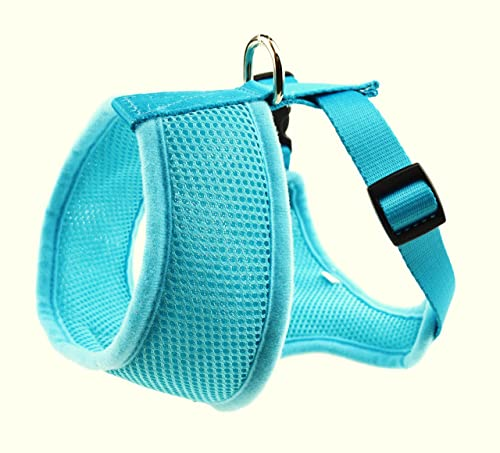 EcoBark Maximum Comfort & Control Harness