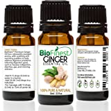 BioFinest Ginger Oil - 100% Pure Ginger Essential Oil - Therapeutic Grade - For Digestion Health - Help Reduce Cholesterol - FREE E-Book (10ml)