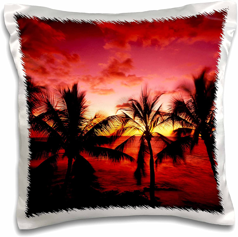 Amazon Com 3drose Pc 144295 1 Beach Palm Trees Kona Hawaii Use Us12 Swe0040 Stuart Westmorland Pillow Case 16 X 16 Arts Crafts Sewing
