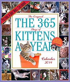 365 Kittens-a-Year 2014 Wall Calendar (Picture-A-Day Wall