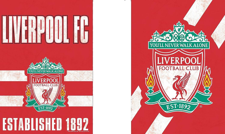 WinCraft Liverpool Football Club Youll Never Walk Alone Logo Flag