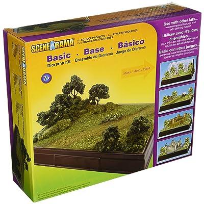 Woodland Scenics Diorama Kit, Basic: Home & Kitchen