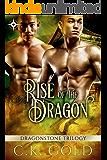 Rise of the Dragon (M/M Fantasy Romance) (The Dragonstone Chronicles Book 1)