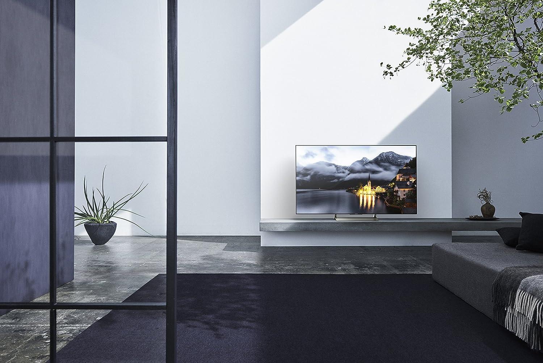 Sony XBR65X900E 65-Inch 4K Ultra HD Smart LED TV (2017 Model)