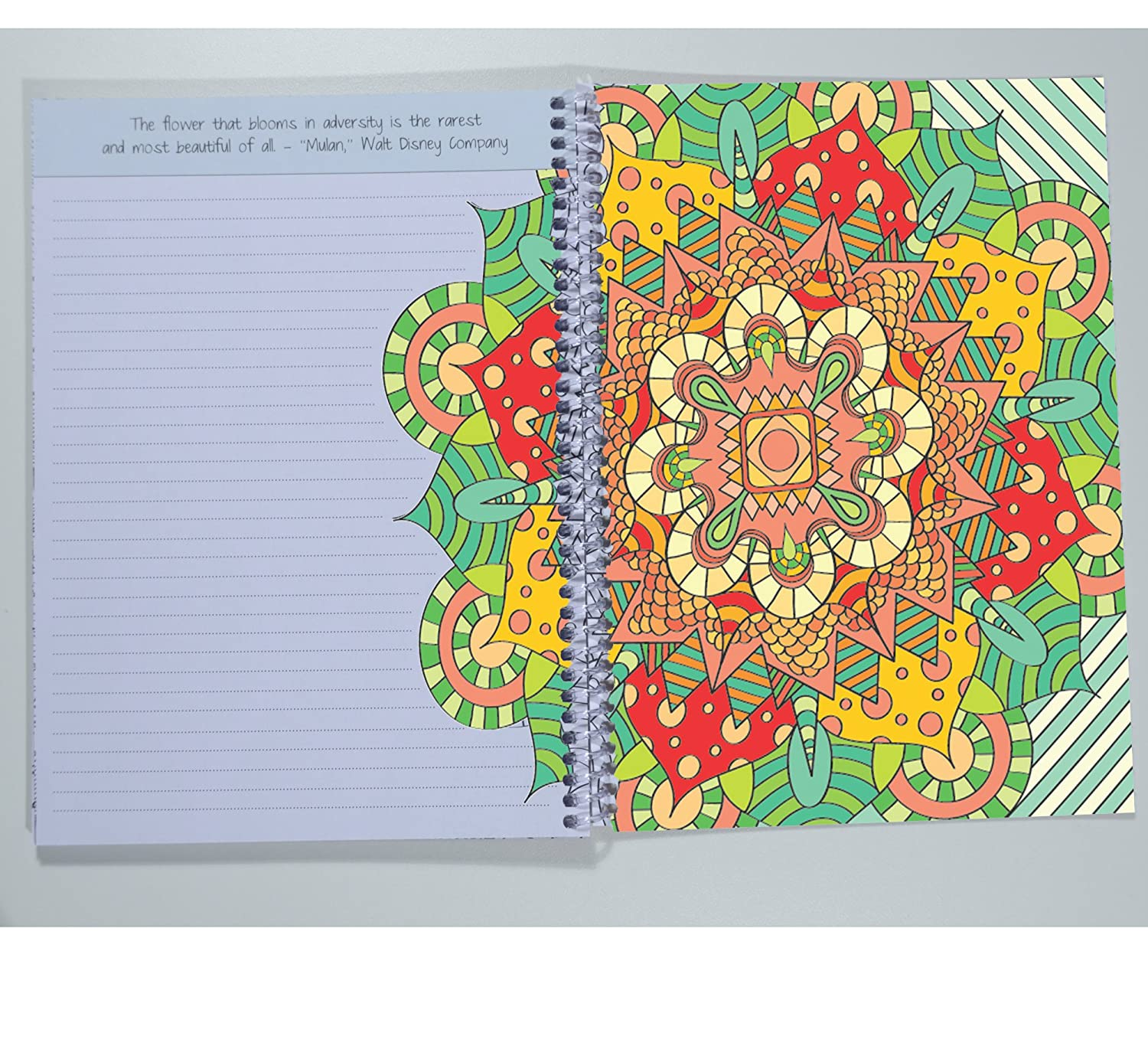 Amazon School Datebooks Adult Coloring Journal An Adult