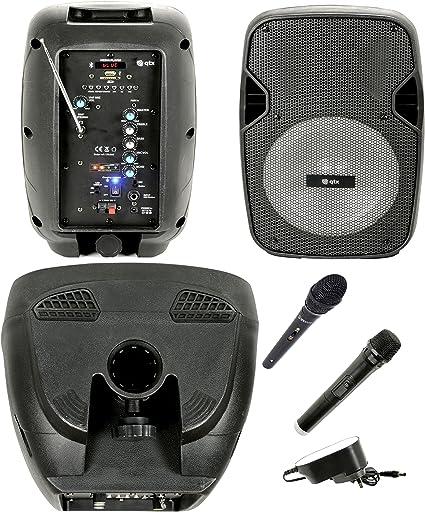 Caja Acústica Amplificada activa (altavoz Karaoke portatil ...