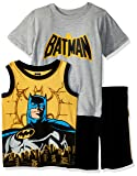 Warner Brothers Boys' Toddler Batman 3 Piece Short