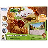 Uncle Milton Giant Ant Farm - Large Viewing Area - Care for Live Ants - Nature Learning Toy - Science DIY Toy Kit - Great Gif