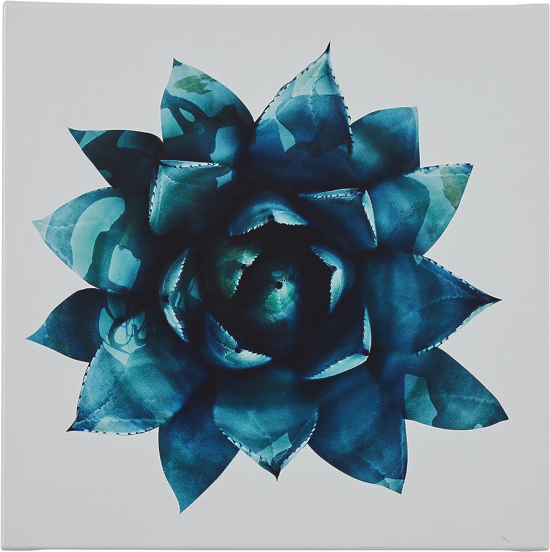 "Amazon Brand – Rivet Ripple Teal Succulent Canvas Print Wall Art Decor, 16"" x 16"""