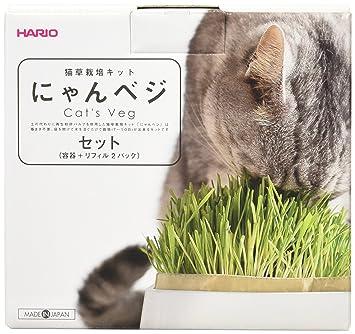 猫草ニャッパ「2個入り一定番(栽培2回分)」の