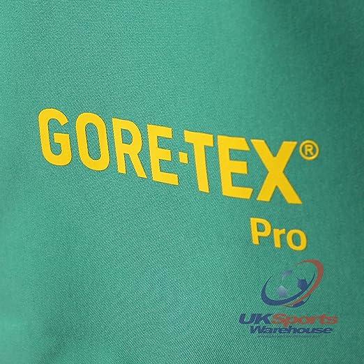 Adidas Terrex Gore Tex Active Shell Damen Clima365 Snowboard