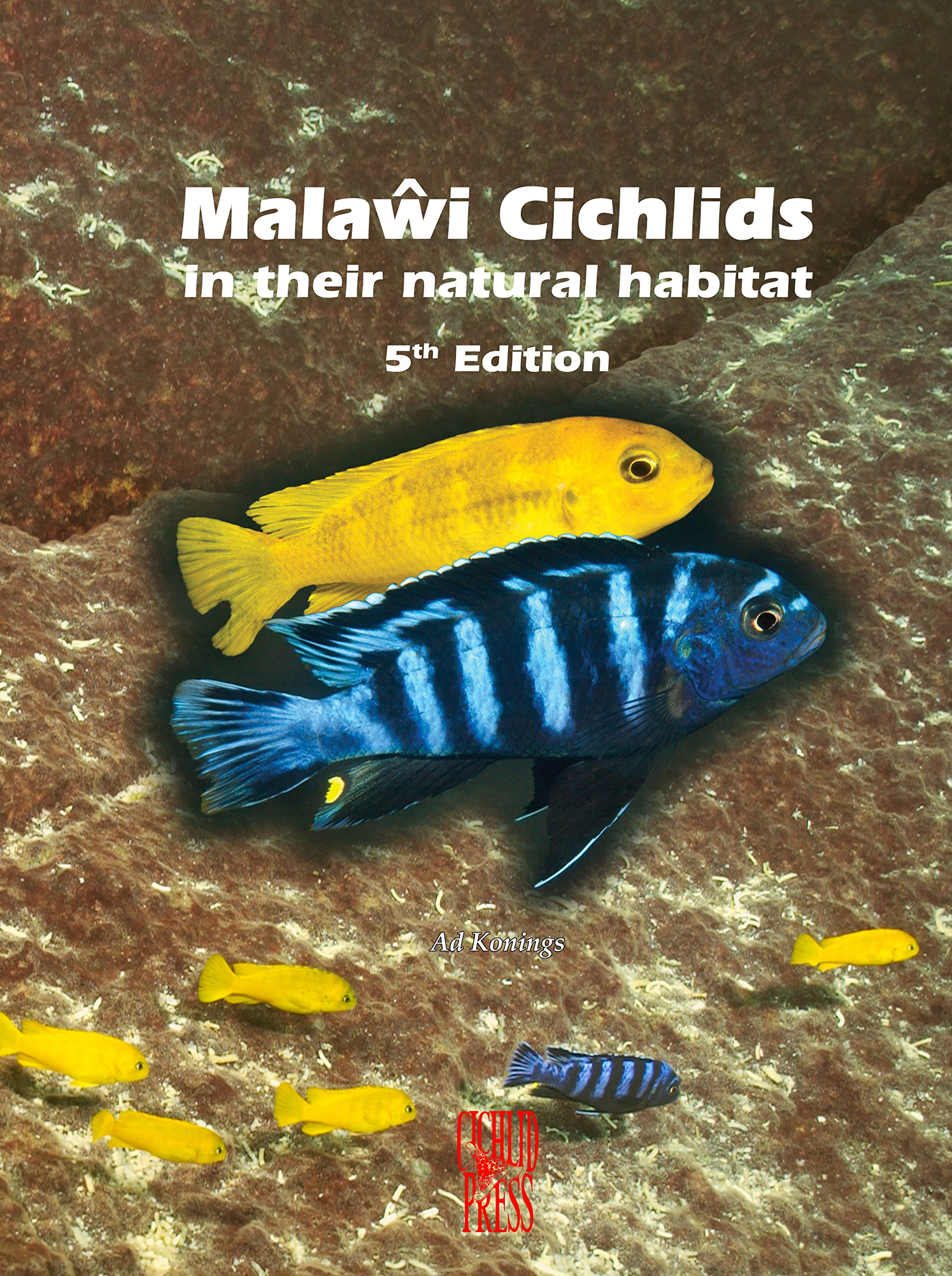 Malawi Cichlids in their Natural Habitat, New 5th Revised & Expanded  Edition 2016: Ad Konings: 9781932892239: Amazon.com: Books