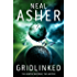 Gridlinked (Agent Cormac Book 1) (English Edition)
