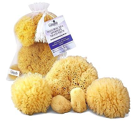 Natural esponjas de mar Juego de 5 Multi Pack el regalo perfecto de Spa juego para mimar a madres, novias, novias, adolescentes; Suave, ...