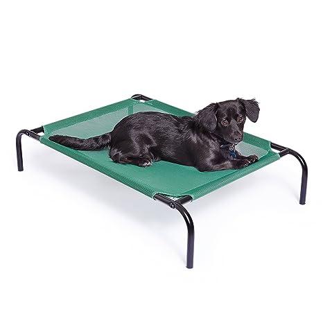 AmazonBasics - Cama para Mascotas elevada y aireada, Mediana: Amazon.es: Productos para mascotas