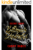 Secret Baby: Billionaire Stepbrother