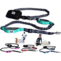 Black Rhino - Premium Hands Free Dog Leash for Running Walking Jogging & Hiking - Adjustable Length Dual Handle Bungee Leash | Medium – Large Dogs | Neoprene Padded Handles - Running Pouch Included