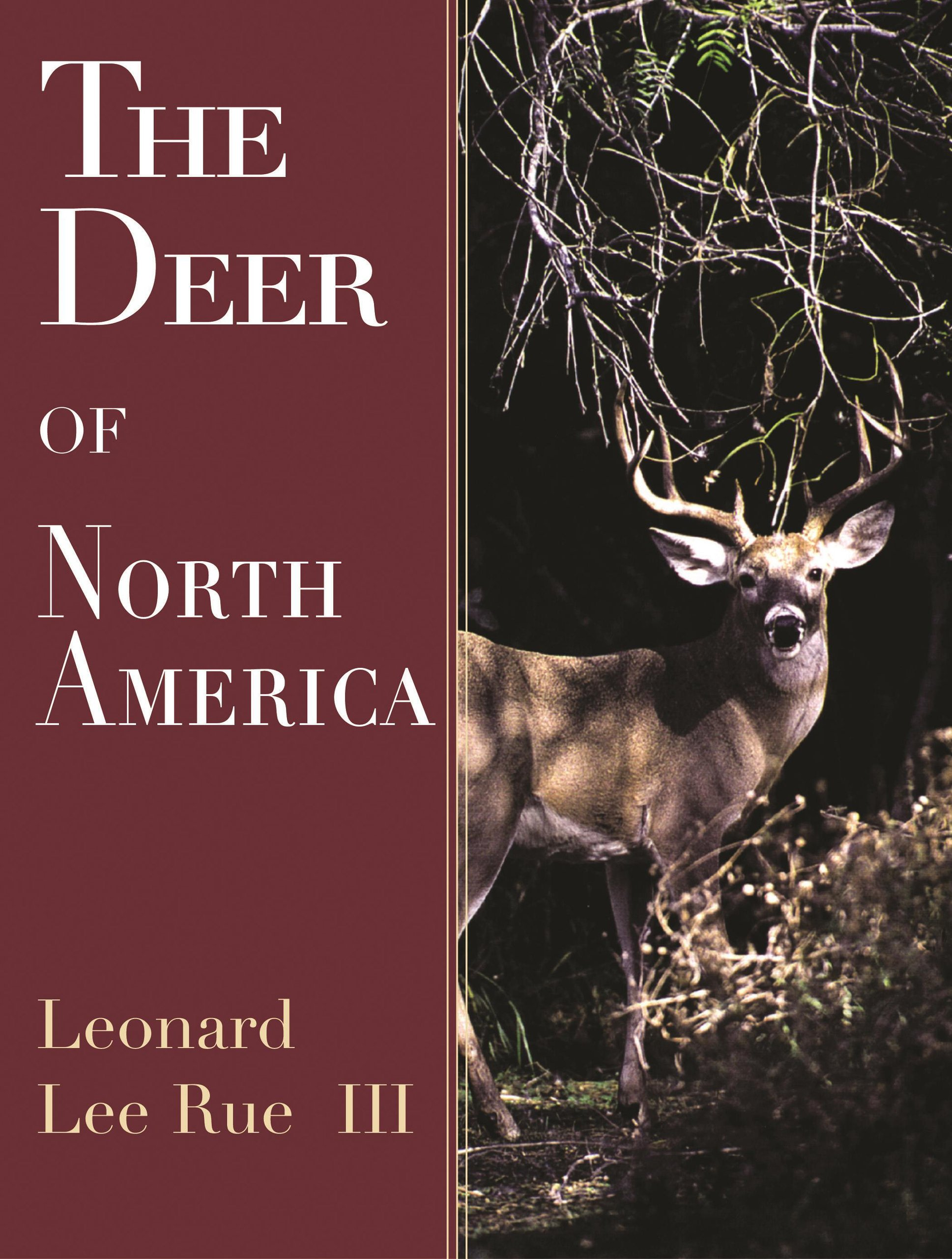 The Deer of North America ebook