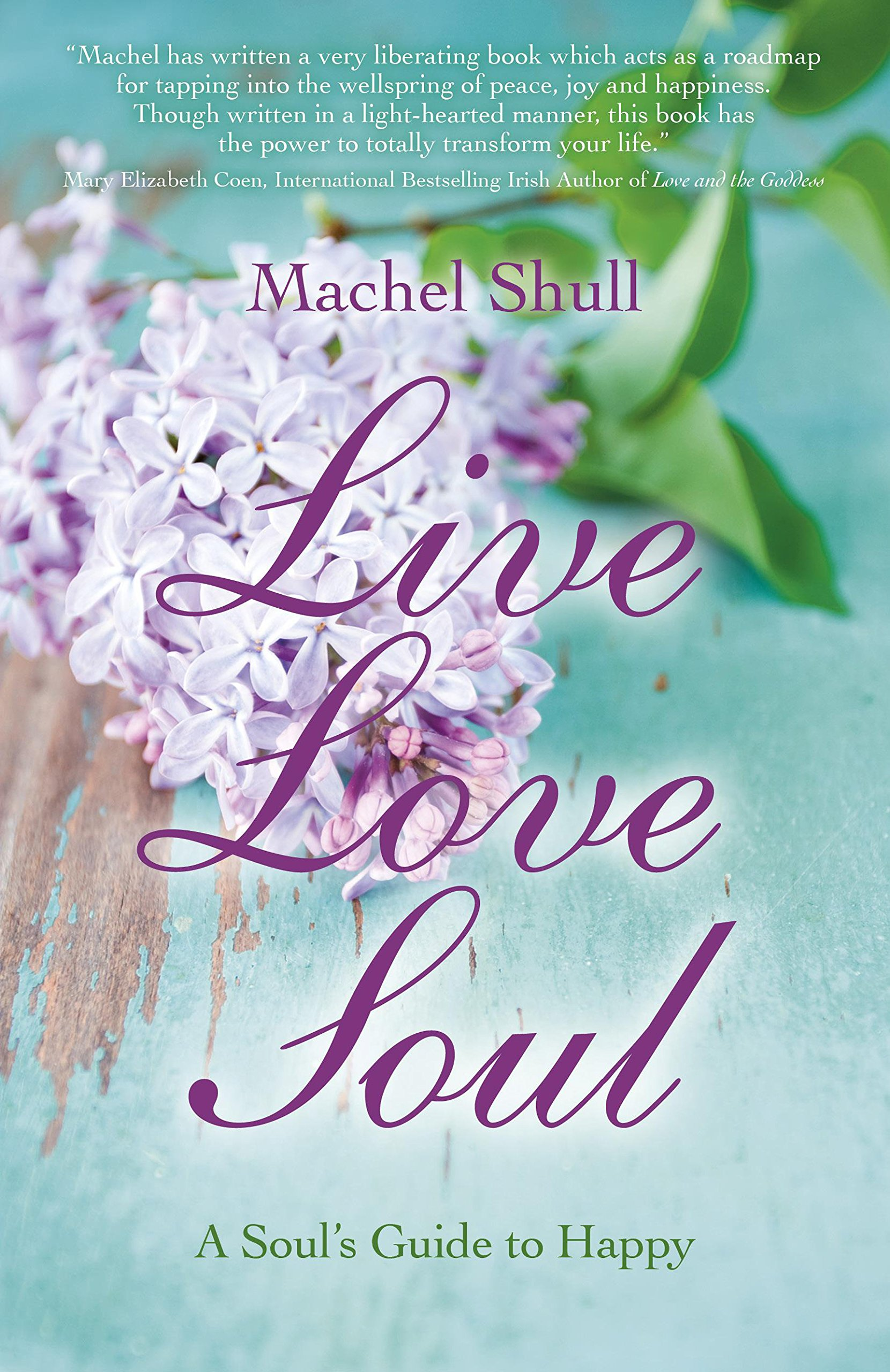 Live Love Soul: A Soul\'s Guide to Happy: Machel Shull: 9781782792840 ...