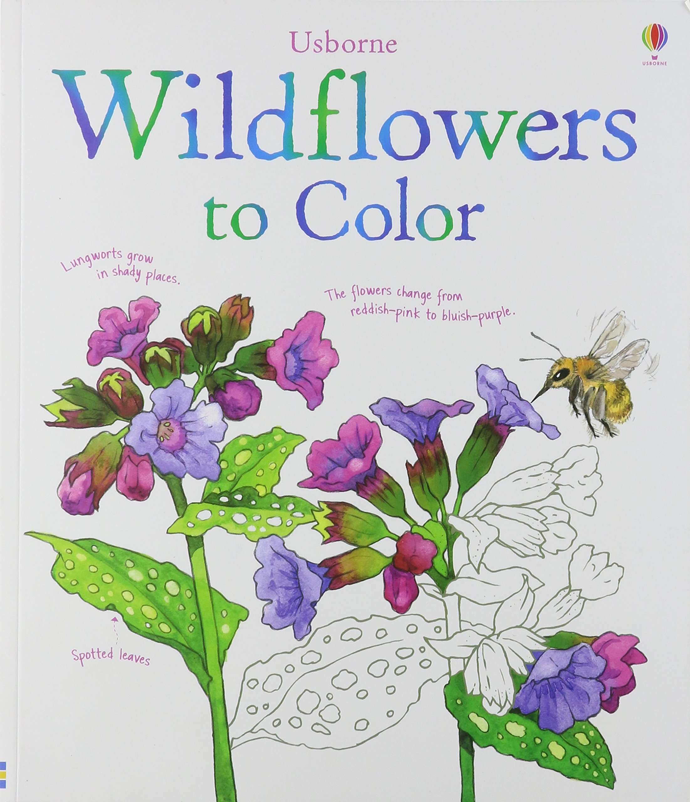 wildflowers to color susan meredith jenny cooper nelupa hussain