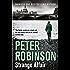 Strange Affair (The Inspector Banks Series, Book 15)