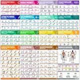 [16-PACK] Laminated Large Workout Poster Set - Perfect Workout Posters For Home Gym - Exercise Charts Incl. Dumbbell, Yoga Po