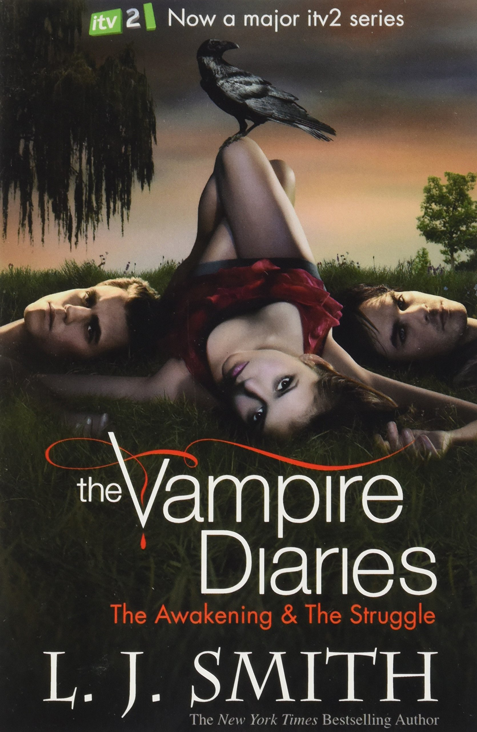 Vampire Diaries Books 1 to 6 4 Books Collection Set Pack TV Tie Edition The Awakening: AND The Struggle Bks. 1 & 2, The Fury: AND The Reunion v. 3 & 4,
