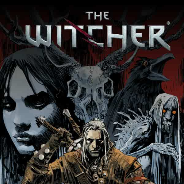 The Witcher Issues Reihe In 2 Banden