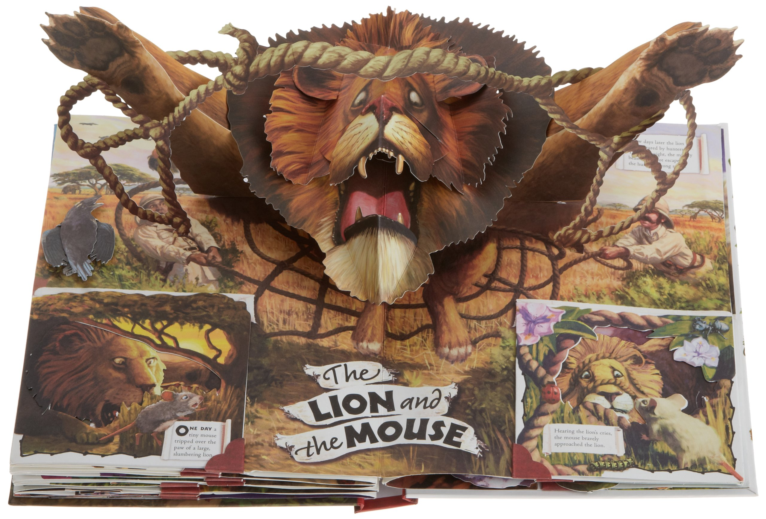 Aesop's Fables: A Pop-Up Book of Classic Tales: Kees Moerbeek, Chris  Beatrice, Bruce Whatley: 9781416971467: Amazon.com: Books