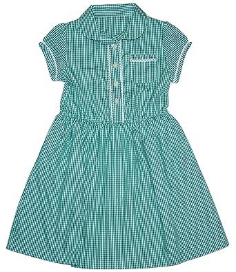 6f15e53f6b5 Ex-Store Girls School Green Gingham Spring Summer Dress Uniform   Amazon.co.uk  Clothing