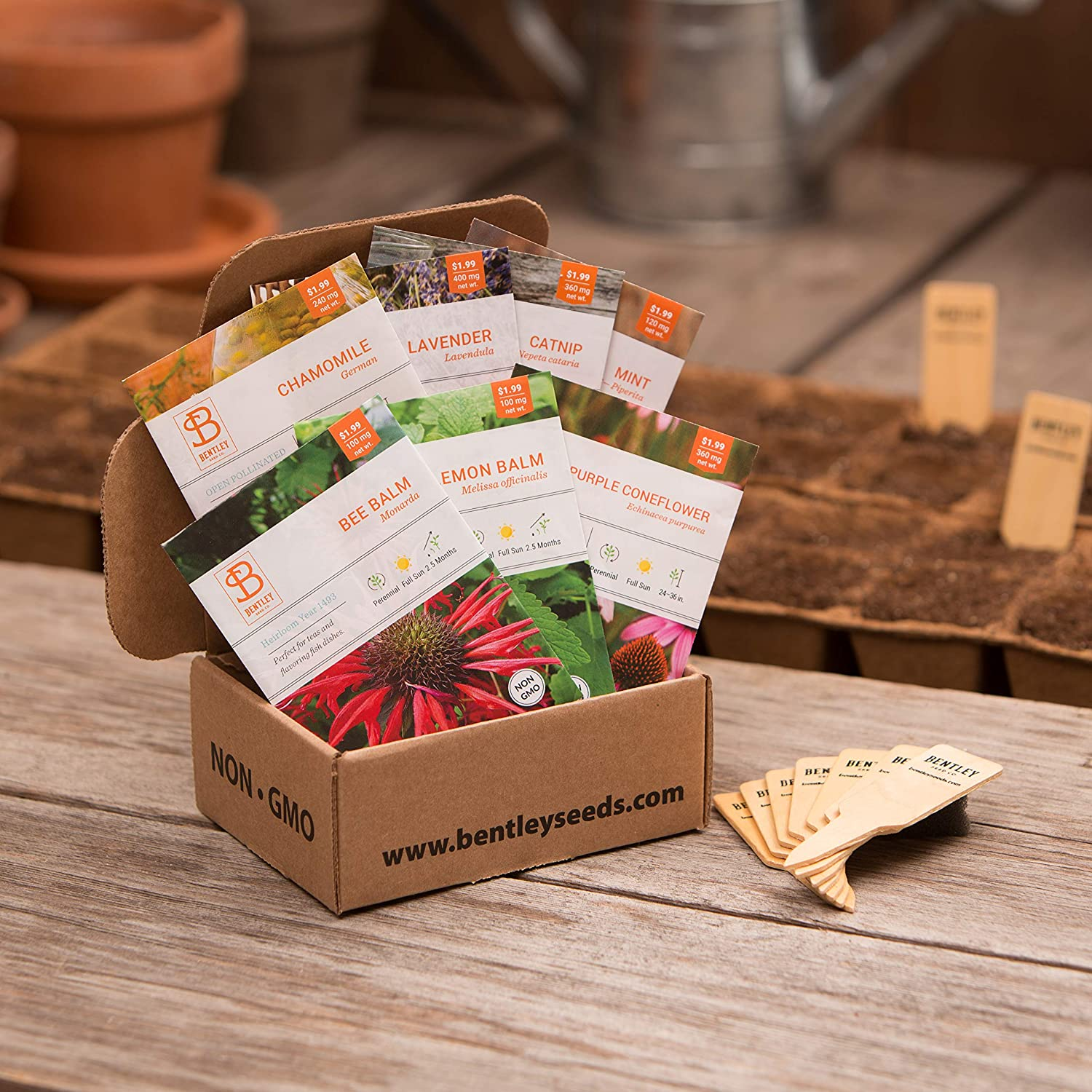 Seed Starter Kit – Medicinal Herbs | Non-GMO | Heirloom Seed Packets | Natural Wood Row Markers | Sustainable Healthy Living | Home Healing