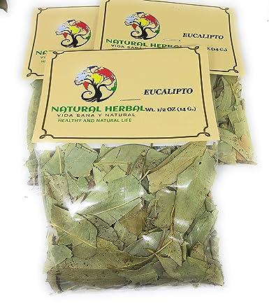 Eucalipto Hierba Tea 10 6 Grms Grocery Gourmet Food