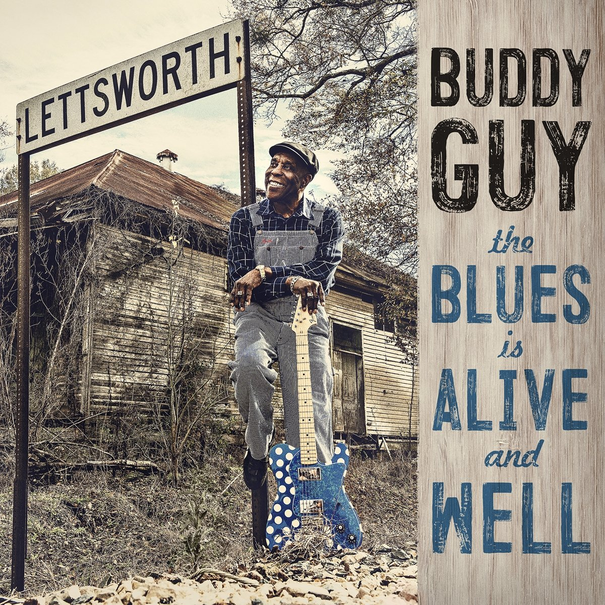 Vinilo : Buddy Guy - The Blues Is Alive And Well (150 Gram Vinyl, Gatefold LP Jacket, Download Insert, 2PC)