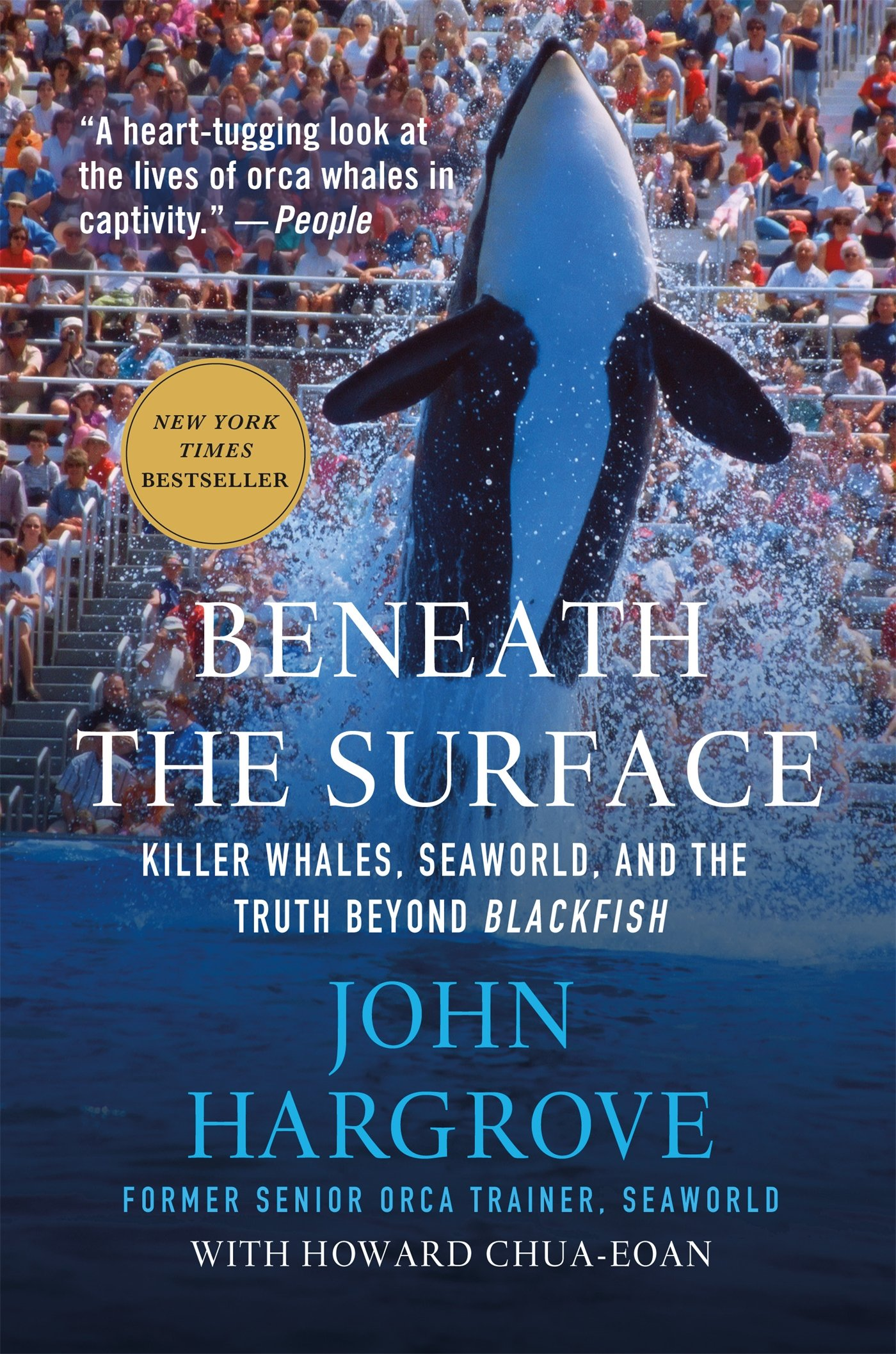 Image result for beneath the surface